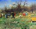 Организация частной пчелиной пасеки