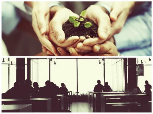 Бизнес на некоммерческих организациях, как и с чего, зарабатывают деньги (НКО)