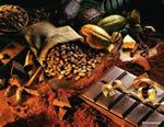 Открываем свой магазин продажи шоколада. Шоколадный мир