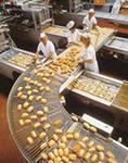 Обзор российской пищевой промышленности. 2009 год