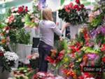 Цветочный магазин Бизнес-План