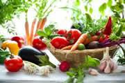 Переработка овощей и фруктов как бизнес.