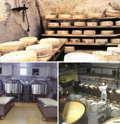 процесс Как открыть производство сыра изумление явно
