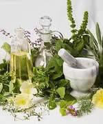 Сбор и продажа лекарственных трав и растений