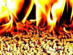 Бизнес план предприятия топливных пеллет