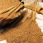 Бизнес производство: переработка зерна - мини завод