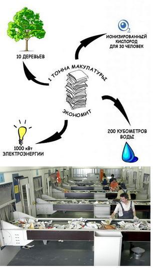 Мировой рынок переработки макулатуры