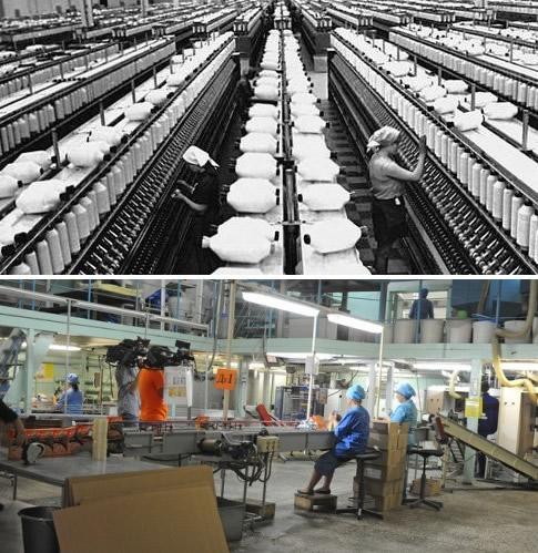 Пищевое производство в России