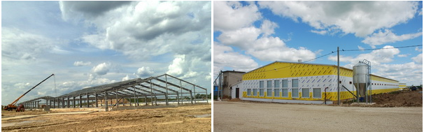 Строительство птицефермы. Цена строительство птицефермы под ключ: от 20 000 руб. м2