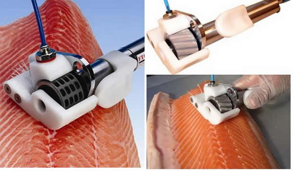 Различные машины для снятие чешуи, удаление косточек, отделения кожи и получения филе. Так же необходимо сортировать рыбу по весу.