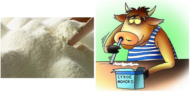 Производство сухого молока: мини завод как бизнес